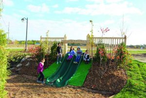 Townline Estates Natural Playground
