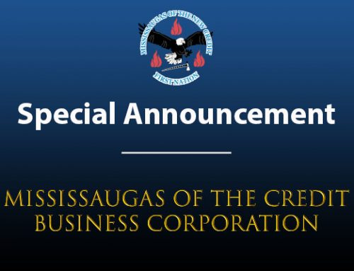 First CEO of Mississaugas of the Credit Business Corporation Appointed