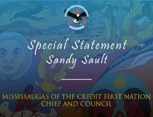 Special Statement – Sandy Sault