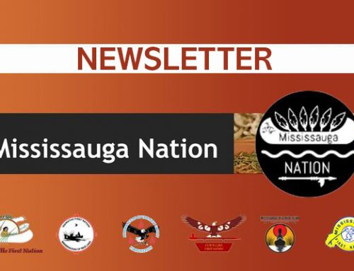 Mississauga Nation Newsletter Jan. 2020 Issue