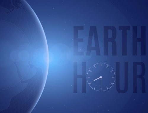 Tonight's The Night!  Mother Earth Hour Begins at 8:30 p.m.