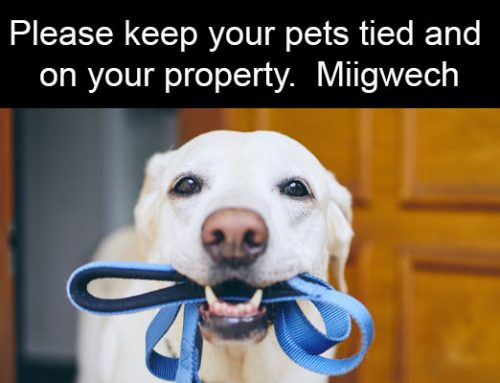 Please Keep Your Pets Tied and On Your Property