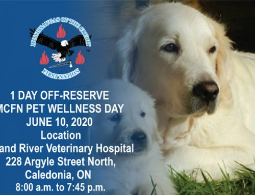 Reminder:  Pet Wellness Appointments June 10, 2020
