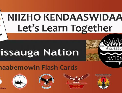 Mississauga Nation:  Niizho Kendaaswidaa Let's Learn Together
