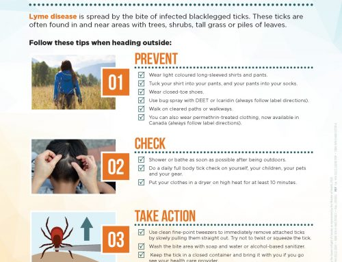 March is Tick Month