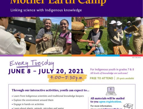Mother Earth Online Camp