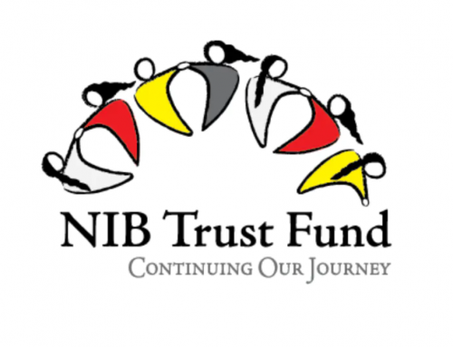 NIB Trust Fund Announces 2021-2022 Call for Applications